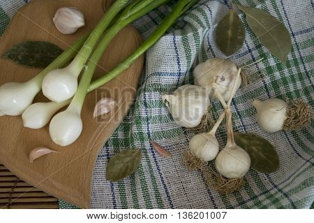 garlic on the kitchen table with spices