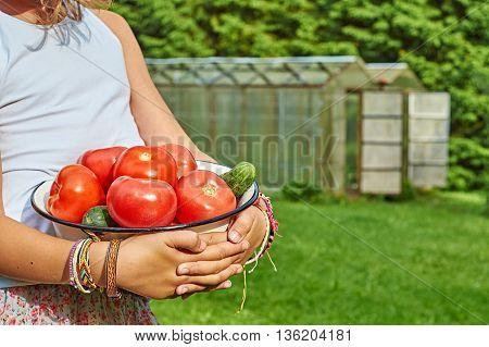Bowl full of fresh vegetables in girl's hands