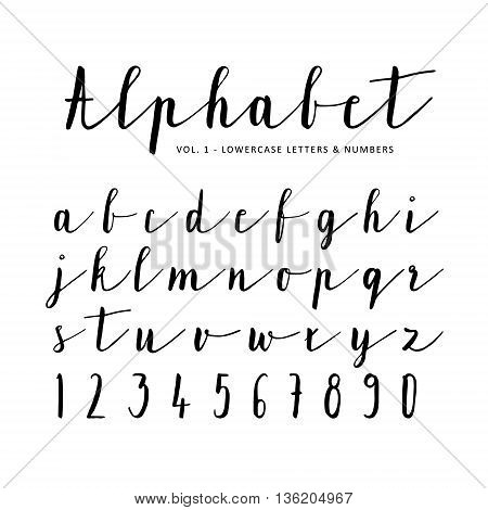 Hand drawn vector alphabet font isolated letters numbers written with marker or ink