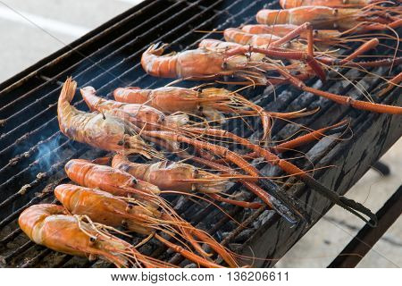 Grilled prawns on the grill. shrimp, grilled,