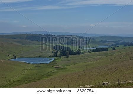 Pond in KwaZulu-Natal nature reserve, Drakensberg South Africa