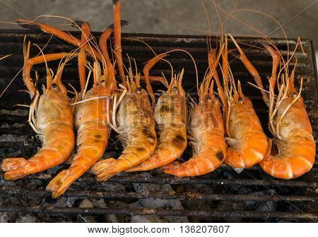 Grilled prawns on the grill . shrimp, grilled, grill, seafood, food,