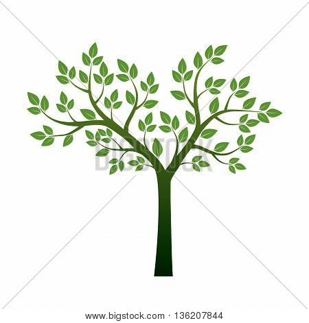 Green Tree and Leafs. Vector Illustration. Graphic Element.