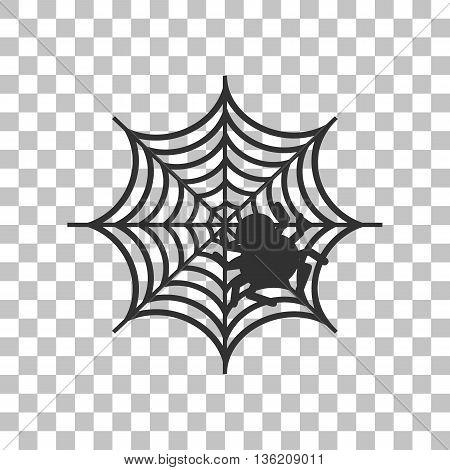 Spider on web illustration Dark gray icon on transparent background.