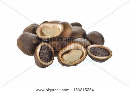 whole and half cut Barometer mushroom on white background