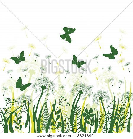 Nature background with green grass wild herbsdandelions and butterflies on white backdrop