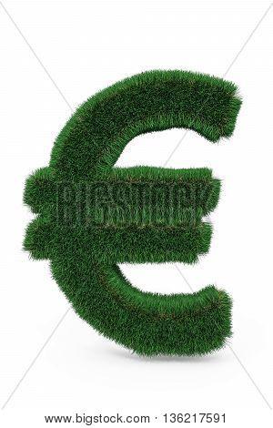 Green Grass Euro Sign.
