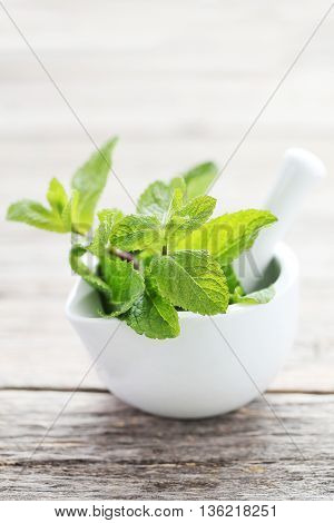 Fresh Mint Leafs On Grey Wooden Table