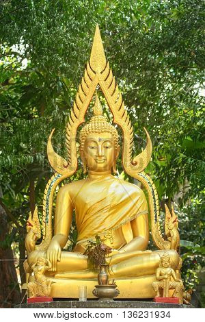 beautiful golden Buddha statue in Thailand monastery