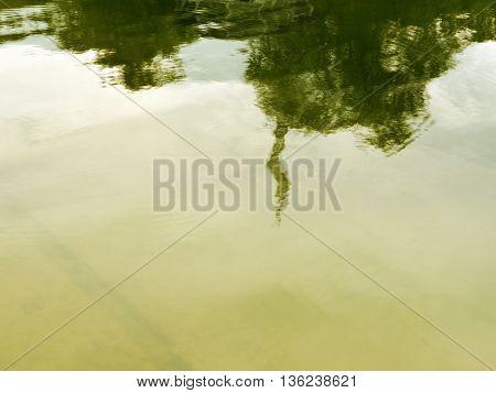 Water Reflections Matte