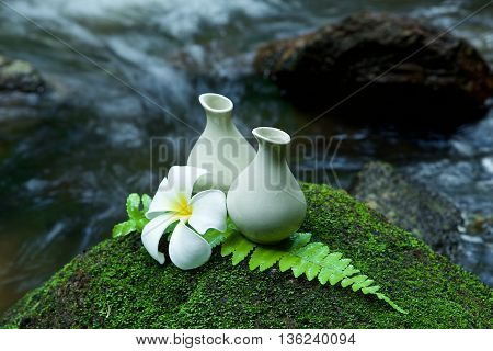 Alternative Skin Care  Homemade Lotion And Pumerlia Flower On Stone, Green Leaf With Tropical Waterf