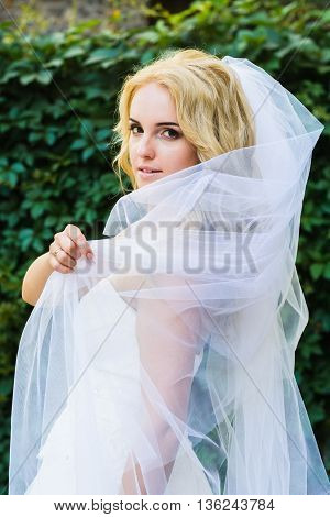 Bride Posing On The Background Of Shrubs