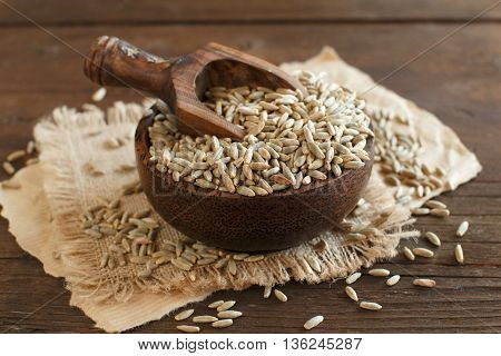 Dry Raw Rye Grain in a bowl with a spoon