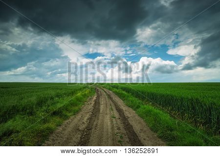 Green Field And Cloudy Sky, Long Exposure
