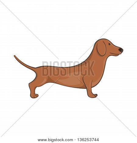 Brown dachshund dog icon in cartoon style on a white background
