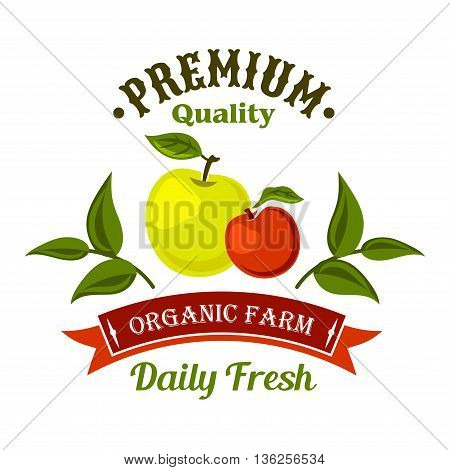 Locally farm grown fresh apple fruits retro symbol for harvest festival or farm market design. Freshly harvested fruits badge decorated by apple branches and retro ribbon banner with text Organic Farm