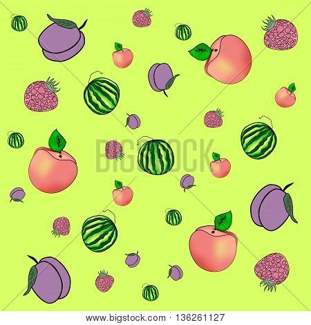 Fruits and berries. Background of watermelon plum raspberry peach and apricot