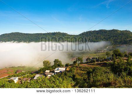 The Veiw Of Village In Sea Fog