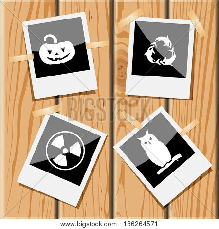 4 images: pumpkin, killer whale as recycling symbol, radiation symbol, owl. Nature set. Photo frames on wooden desk. Vector icons.