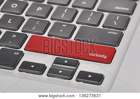 The Computer Keyboard Button Written Word Curiosity