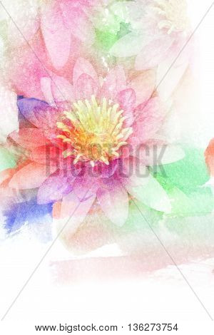 Abstract watercolor illustration of blossom lotus. Watercolor painting. Floral watercolor illustration.