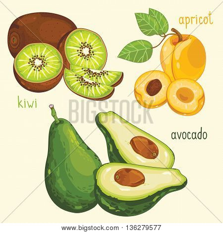 Set of fruit mix vector isolated. Healthy eat. Kiwi, apricot and avocado fruit. Natural organic food. Ingredients for a vegetarian meal. Sweet and ripe summer fruit.