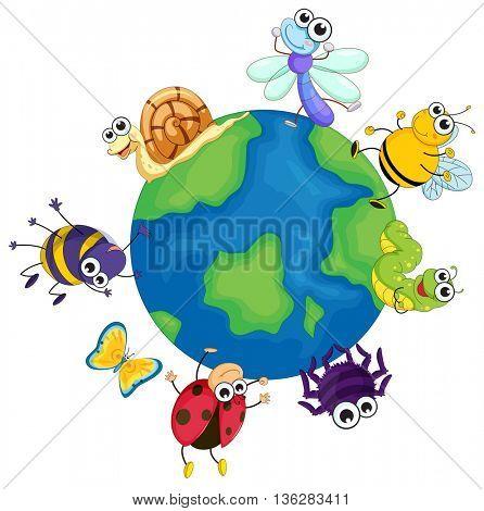 Different bugs around the world illustration