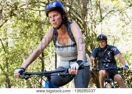 Couple riding bike on the wood