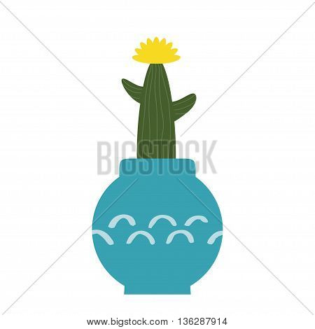 Cactus vector illustration. Plants in cute retro pots. Art of house plants from cactus. Isolated vector. Illustration for catalogs on gardening home plant. Cartoon of green dwarf cactus. Icon cactus