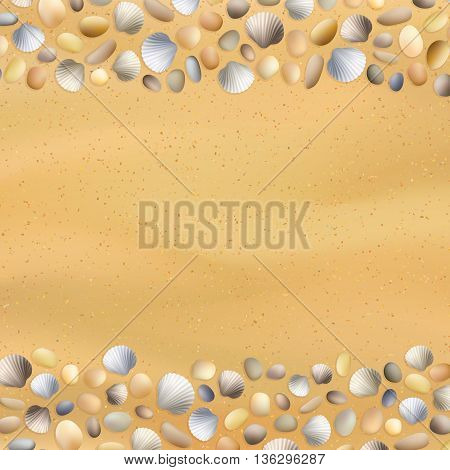 Shells Sand Seashore Background