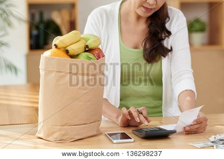 Cropped image of housewife checking her grocery expenses