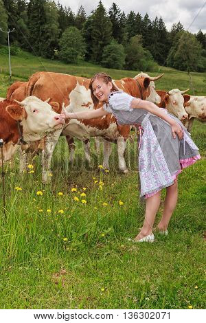 Young Bavarian milkmaid in dirndl caressing your cows on the pasture.