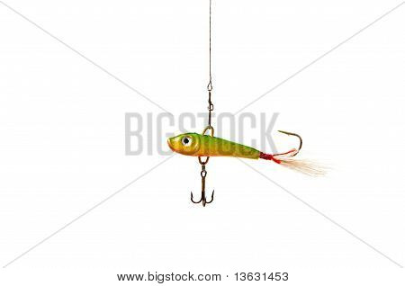 Fishing Bait