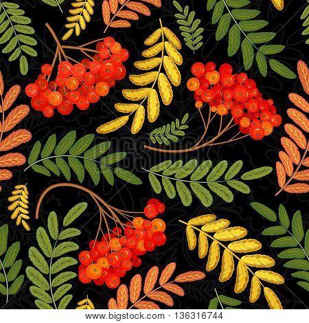 Rowan vector seamless pattern. Juicy, ripe rowan berries on black background. For wallpaper, packaging, textiles, fabrics etc