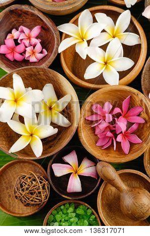 many colorful frangipani in bowl ,salt on palm leaf