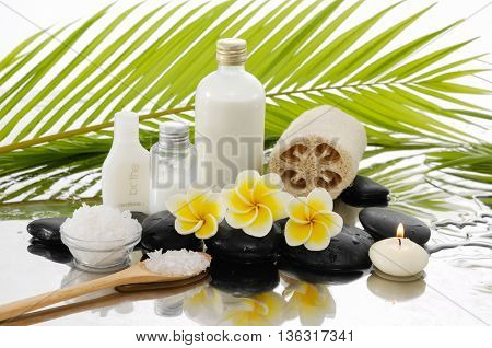 Spa set with salt in spoon, candle ,oil, ,stones â??green palm background