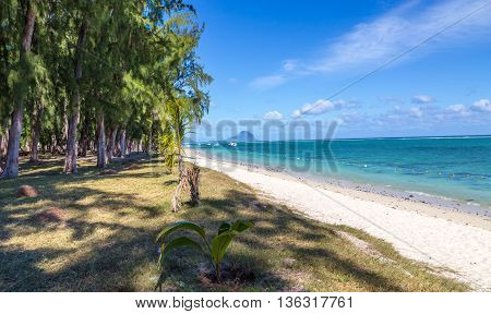 Public Beach Of Flic En Flac Mauritius Overlooking The Sea