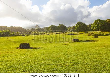 Large Green Field. Sunny Day And Cloudy Sky.
