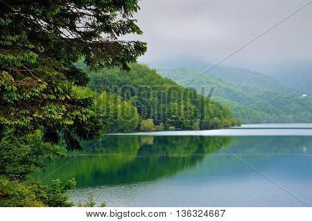 fabulous Lake Brugneto in fog Park Antola, Liguria, Italy