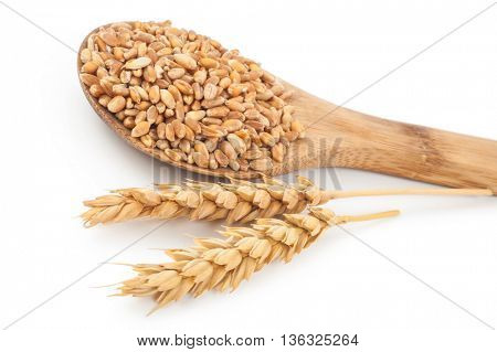 Wheat in wooden spoon