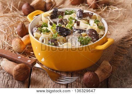 Italian Food: Pasta With Mushrooms And Cream Sauce Close-up. Horizontal, Rustic