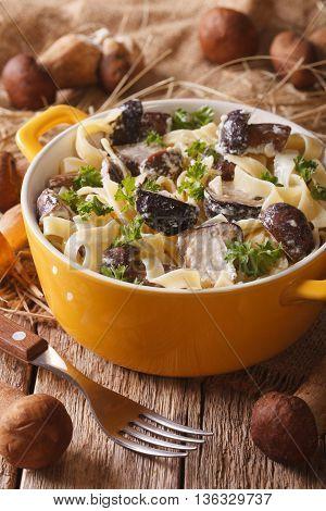 Italian Pasta With Porcini Mushrooms And Cream Sauce Close-up. Vertical