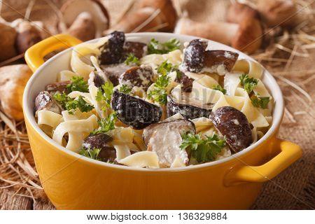 Italian Pasta With Wild Mushrooms In Cream Sauce Close-up. Horizontal