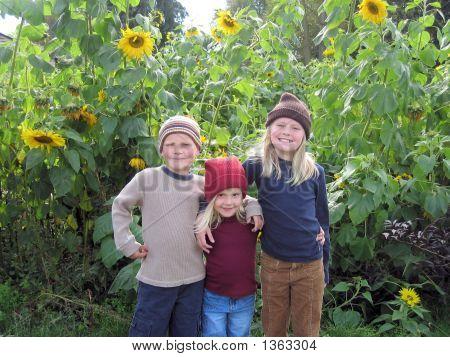 Sunflower Kids