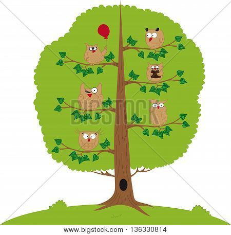 Funny owls sitting on a tree branch.