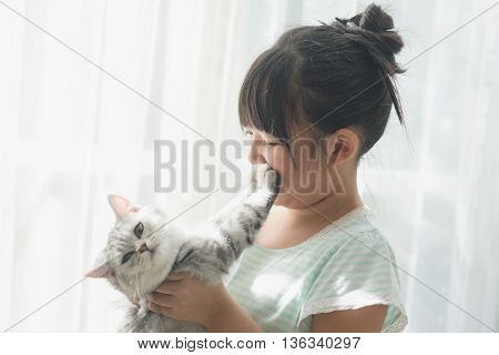 Beautiful asian girl playing with american shorthair cat under sunlight from a window