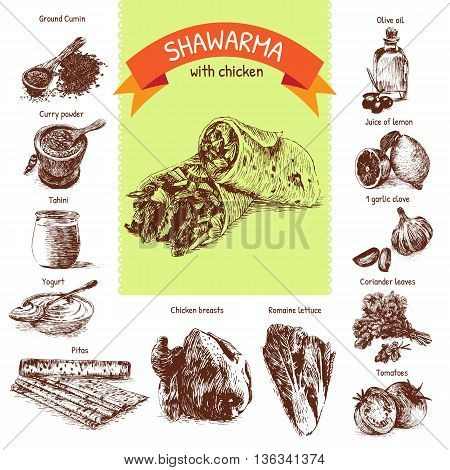 Vector illustration of shawarma ingredients with chicken. Hand drawn colorful illustration on white background