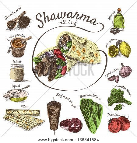 Vector illustration of shawarma ingredients with beef. Hand drawn colorful illustration on white background