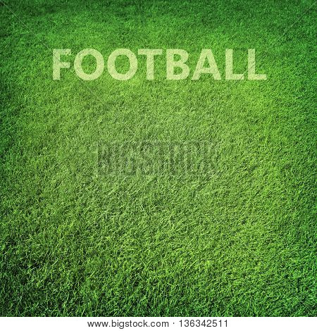 Abstract green grass, football background, football field with copy space