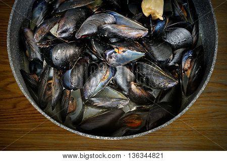 Marine mussels, seafood preparation of Italian food